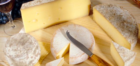 치즈 보관 노하우