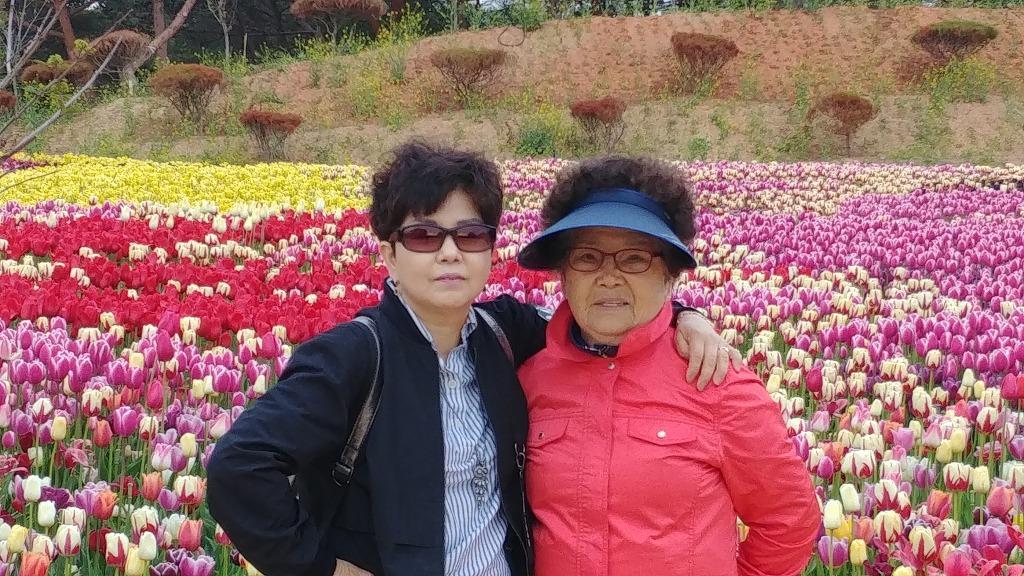 봄꽃 여행~~